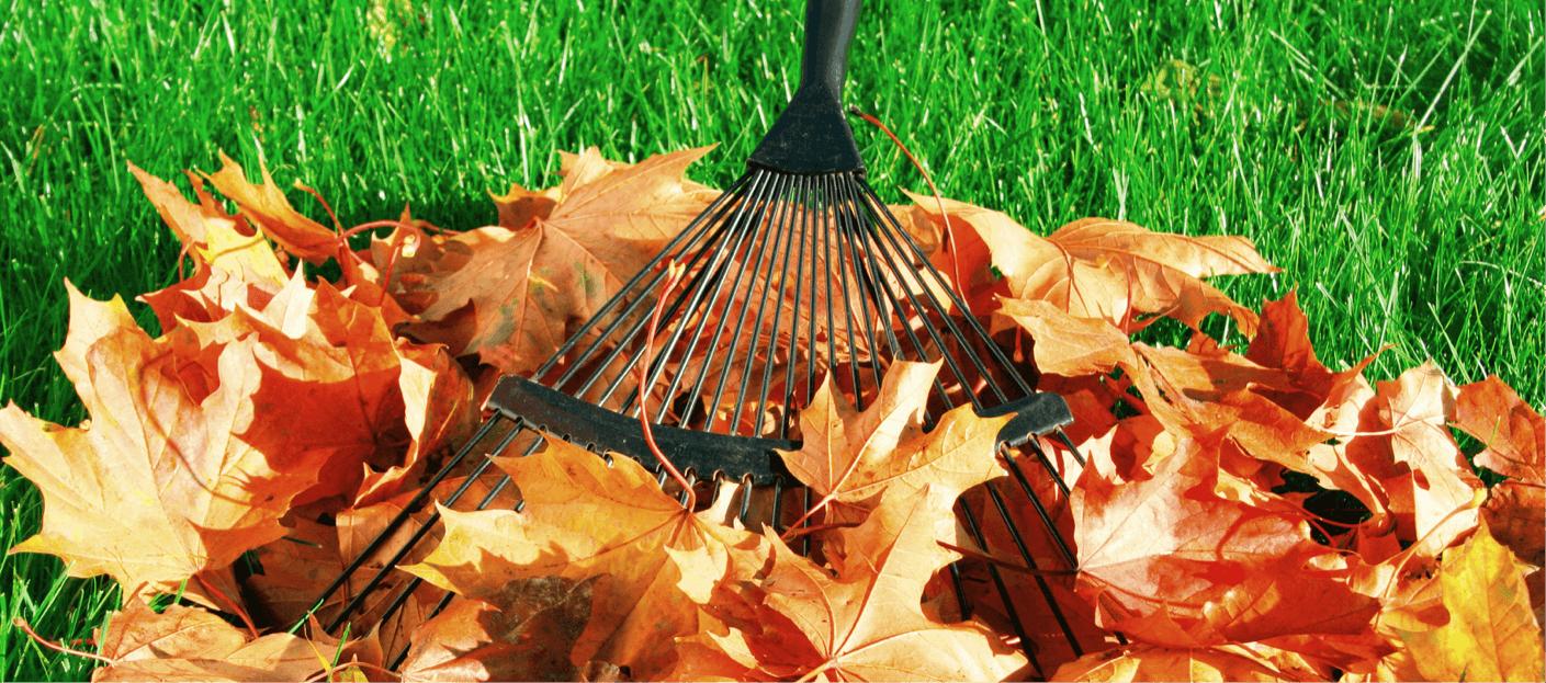 Hainmüller – Gartengestaltung mit Herz