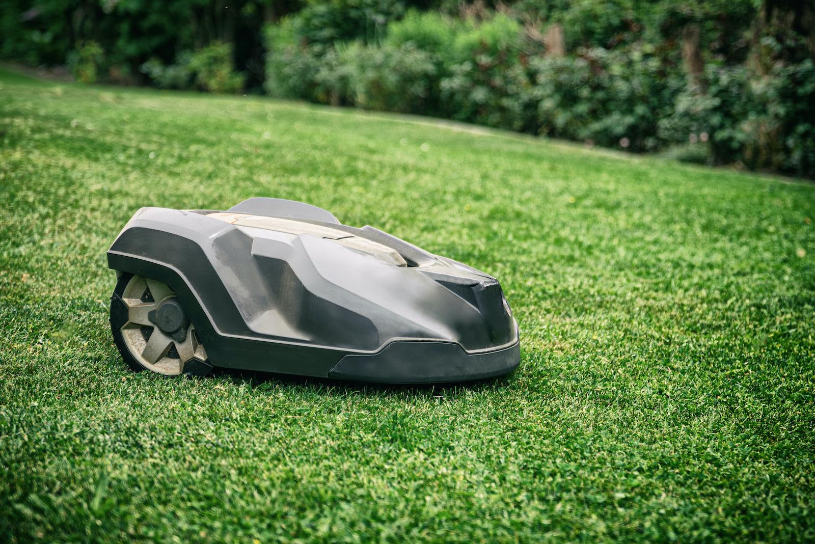 Mähroboter auf Rasen